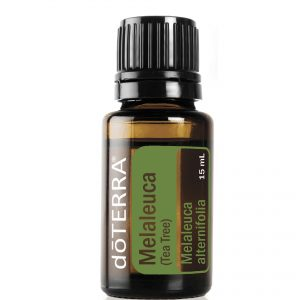 melaleuca-tea-tree-15ml3